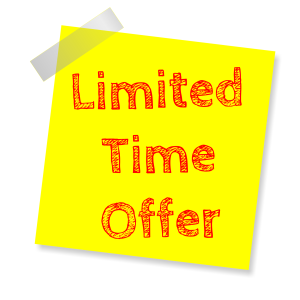 Limited Time Offers and Discounting for E-Commerce Websites